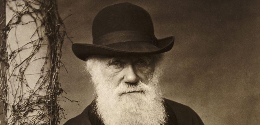Резултат с изображение за Чарлз Дарвин се завръща в Англия